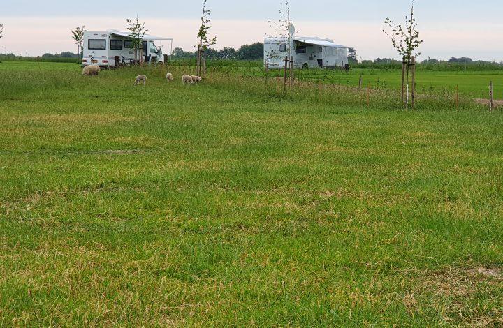 Camping (inclusief de tarieven)